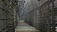 Stacheldraht imehemaligen Konzentrationslager Auschwitz